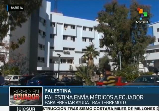 Ayuda Palestina